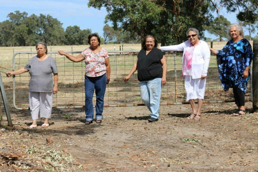 Gravel fence cousins 3 web